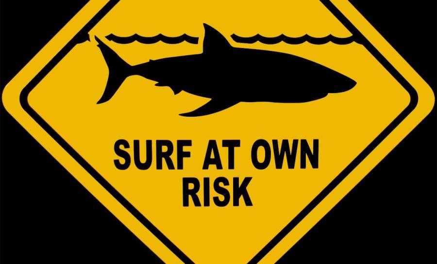 Surf på eget asvar