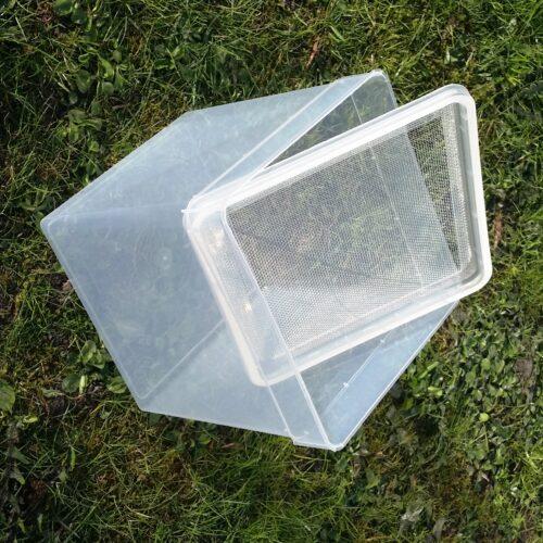Faunaboks til insekt-opbevaring