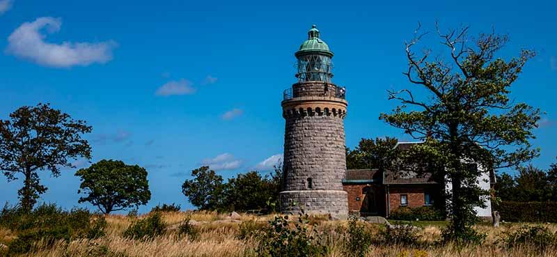 Bornholm tidligere hjemsted for Gryllus campestris