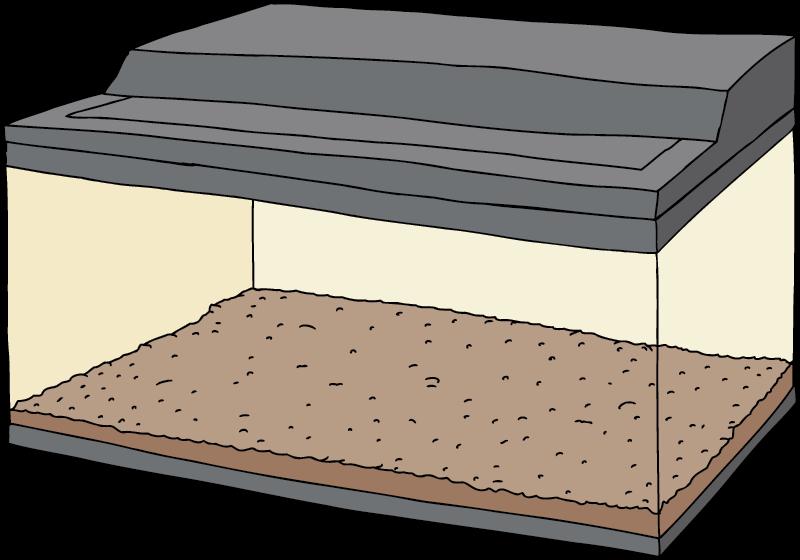 Terrarie til fårekyllinge-opdræt